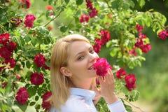 Όμορφη φρεσκάδα Όμορφο κορίτσι στον ανθίζοντας ροδαλό θάμνο Προκλητικό κορίτσι με τα κόκκινα λουλούδια στο θερινό κήπο λατρευτό κ στοκ εικόνες με δικαίωμα ελεύθερης χρήσης
