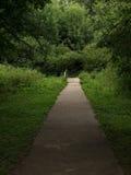 όμορφη φωτογραφία πάρκων μονοπατιών πολύ Στοκ Εικόνες