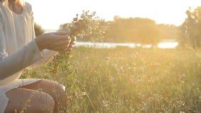 όμορφη φύση κοριτσιών απόθεμα βίντεο