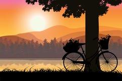 Όμορφη φύση στο ηλιοβασίλεμα, διανυσματικές απεικονίσεις Στοκ εικόνα με δικαίωμα ελεύθερης χρήσης