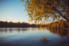 Όμορφη φύση στο πάρκο πόλεων στοκ εικόνες