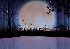 Όμορφη φύση τη νύχτα, διανυσματικές απεικονίσεις Στοκ Εικόνες