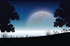 Όμορφη φύση τη νύχτα, διανυσματικές απεικονίσεις Στοκ Εικόνα