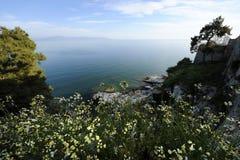όμορφη φύση τοπίων σύνθεσης ηλιόλουστη στοκ φωτογραφίες