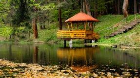όμορφη φύση Στοκ Εικόνα
