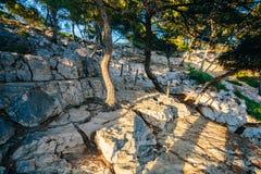 Όμορφη φύση Calanques στην κυανή ακτή Στοκ φωτογραφίες με δικαίωμα ελεύθερης χρήσης