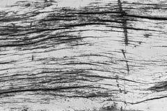 Όμορφη φύση grunge και βρώμικο ξύλινο υπόβαθρο σύστασης Στοκ φωτογραφίες με δικαίωμα ελεύθερης χρήσης