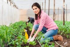 Όμορφη φύτευση εργαζομένων κήπων θηλυκή Στοκ Εικόνα