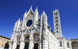 όμορφη χαραγμένη καθεδρικός ναός ενθεμένη Ιταλία πάτωμα μαρμάρινη επιτροπή Σιένα της Ευρώπης στοκ φωτογραφίες