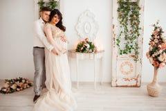 Όμορφη χαριτωμένη έγκυος γυναίκα Στοκ εικόνα με δικαίωμα ελεύθερης χρήσης