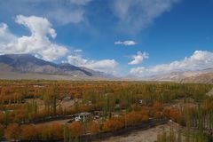 Όμορφη χειμερινή εποχή σε Leh Ladakh, Ινδία στοκ φωτογραφίες με δικαίωμα ελεύθερης χρήσης