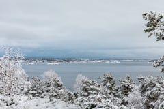Όμορφη χειμερινή ημέρα σε Odderoya σε Kristiansand, Νορβηγία καλυμμένα δέντρα χιονιού π&ep Ο ωκεανός και το αρχιπέλαγος Στοκ Φωτογραφία