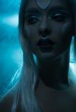 Όμορφη χειμερινή κινηματογράφηση σε πρώτο πλάνο νεράιδων Στοκ εικόνα με δικαίωμα ελεύθερης χρήσης