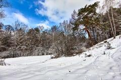 Όμορφη χειμερινή landscape Ζωικές διαδρομές στον τομέα χιονιού Στοκ Φωτογραφία