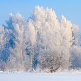 Όμορφη χειμερινή landscape Στοκ εικόνες με δικαίωμα ελεύθερης χρήσης