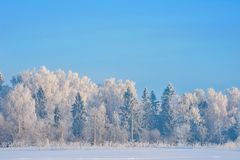 Όμορφη χειμερινή landscape Στοκ φωτογραφίες με δικαίωμα ελεύθερης χρήσης