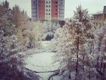 Όμορφη χιονώδης ημέρα στοκ εικόνα