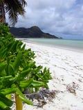 όμορφη ωκεάνια όψη seychelle παραλ&iota Στοκ Εικόνα