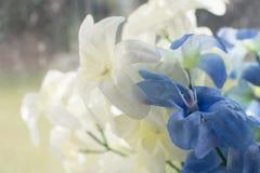 Όμορφη floral ανασκόπηση ανασκόπησης… με τα ζωηρόχρωμα λουλούδια Στοκ εικόνες με δικαίωμα ελεύθερης χρήσης