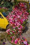 Όμορφη floral διακόσμηση ενός παλαιού αυτοκινήτου, Timisoara, Ρουμανία στοκ φωτογραφία με δικαίωμα ελεύθερης χρήσης