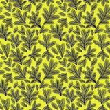 Όμορφη floral διακόσμηση, διανυσματικό άνευ ραφής σχέδιο Στοκ εικόνες με δικαίωμα ελεύθερης χρήσης