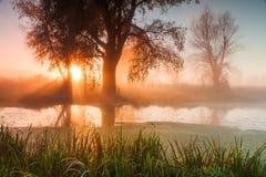 Όμορφη misty αυγή την άνοιξη στον ποταμό Στοκ Φωτογραφία