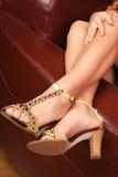 όμορφη s γυναίκα ποδιών Στοκ εικόνες με δικαίωμα ελεύθερης χρήσης