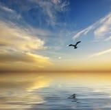 Όμορφη seascape ανασκόπηση Στοκ εικόνα με δικαίωμα ελεύθερης χρήσης