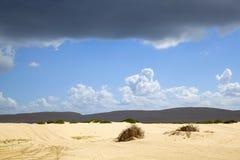 Όμορφοι αμμόλοφοι άμμου, Αυστραλία. Στοκ εικόνα με δικαίωμα ελεύθερης χρήσης