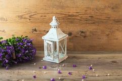 Όμορφοι λαμπτήρας κηροπηγίων ανθών και campanula λουλουδιών Στοκ Εικόνες