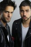 όμορφοι αδελφοί δύο Στοκ Φωτογραφία
