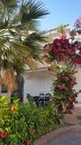 Όμορφοι ισπανικοί κήποι Στοκ εικόνες με δικαίωμα ελεύθερης χρήσης