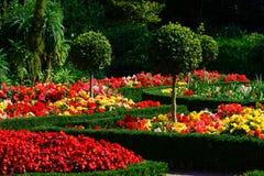 όμορφοι κήποι Πλύμουθ UK Στοκ Φωτογραφία