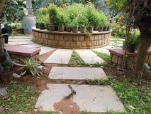 Όμορφοι κήποι στοκ φωτογραφία με δικαίωμα ελεύθερης χρήσης