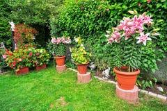 Όμορφοι κήπος λουλουδιών και διακοσμήσεις δοχείων λουλουδιών στο καλοκαίρι Στοκ Φωτογραφία