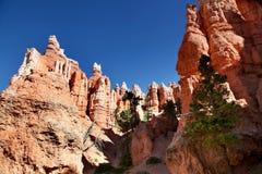 Όμορφοι και ζωηρόχρωμοι σχηματισμοί βράχου στο εθνικό πάρκο φαραγγιών του Bryce Στοκ εικόνες με δικαίωμα ελεύθερης χρήσης