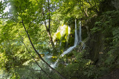 όμορφοι καταρράκτες καταρρακτών βλάστησης ρευμάτων φρέσκοι πράσινοι plitvice Στοκ εικόνα με δικαίωμα ελεύθερης χρήσης