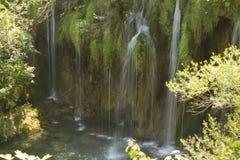 όμορφοι καταρράκτες καταρρακτών βλάστησης ρευμάτων φρέσκοι πράσινοι plitvice Στοκ εικόνες με δικαίωμα ελεύθερης χρήσης