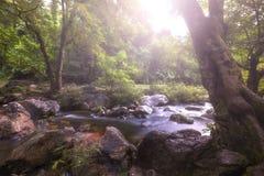 Όμορφοι καταρράκτες στο εθνικό πάρκο στην Ταϊλάνδη Καταρράκτης του τοπικού LAN Khlong, επαρχία Kamphaengphet στοκ εικόνες με δικαίωμα ελεύθερης χρήσης