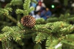 Όμορφοι κώνοι σε ένα χριστουγεννιάτικο δέντρο, θολωμένο υπόβαθρο ζωηρόχρωμο Στοκ Φωτογραφία
