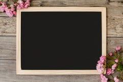 Όμορφοι κλάδοι του ρόδινου sakura ανθίσματος Στοκ φωτογραφία με δικαίωμα ελεύθερης χρήσης