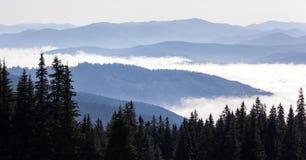 Όμορφοι λόφοι στην ανατολή στα Καρπάθια βουνά Στοκ φωτογραφίες με δικαίωμα ελεύθερης χρήσης