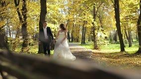 Όμορφοι νύφη και νεόνυμφος ζευγών που περπατούν στο πάρκο φθινοπώρου απόθεμα βίντεο