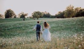 Όμορφοι νύφη και νεόνυμφος στο ηλιοβασίλεμα στην πράσινη φύση στοκ φωτογραφίες