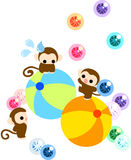 Όμορφοι πίθηκοι που ισορροπούν σε μια κυλώντας σφαίρα Στοκ Εικόνες