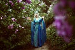 Όμορφοι περίπατοι γυναικών νεραιδών σε ένα δάσος νεράιδων Στοκ φωτογραφία με δικαίωμα ελεύθερης χρήσης