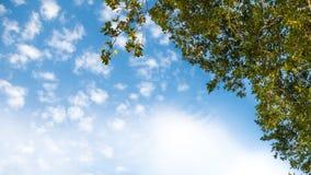 Όμορφοι σχηματισμοί σύννεφων στον ουρανό στοκ φωτογραφίες με δικαίωμα ελεύθερης χρήσης