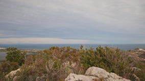 Όμορφοι τομείς ρυζιού σε Albufera και Cullera, Ισπανία απόθεμα βίντεο