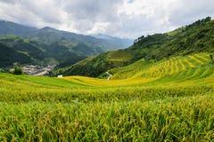Όμορφοι τομείς ρυζιού τοπίων terraced της MU Cang Chai Στοκ Εικόνες