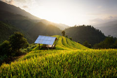 Όμορφοι τομείς ρυζιού τοπίων terraced της MU Cang Chai Στοκ εικόνα με δικαίωμα ελεύθερης χρήσης